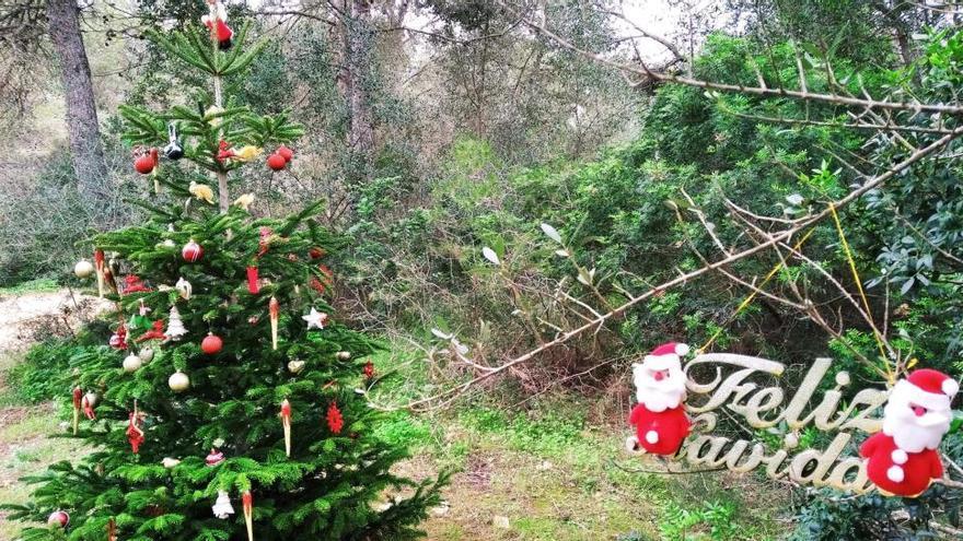 Un árbol de Navidad en pleno bosque en Xàbia