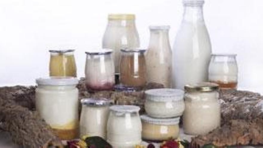 El Gobierno pide a las industrias lácteas que informen sobre precios