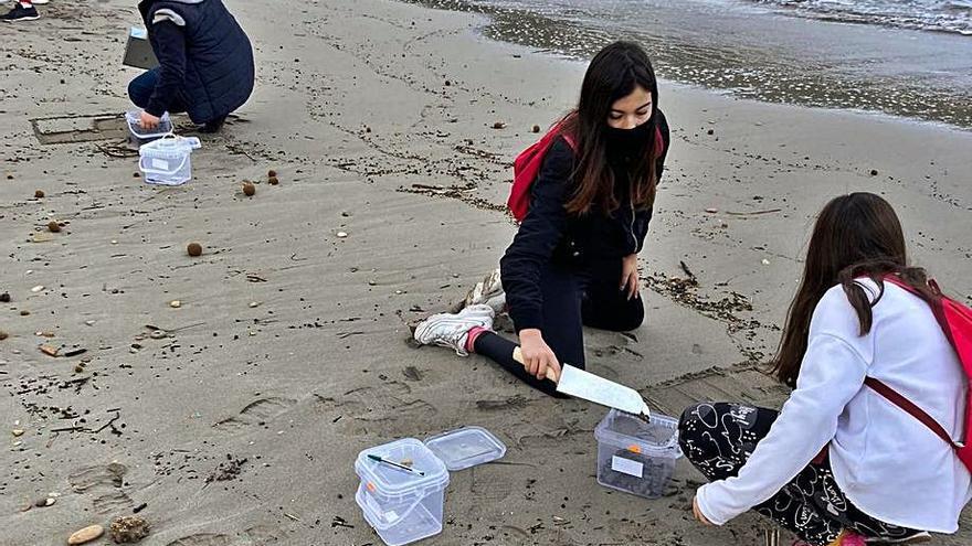 Observadores del mar, las manos y ojos de los científicos