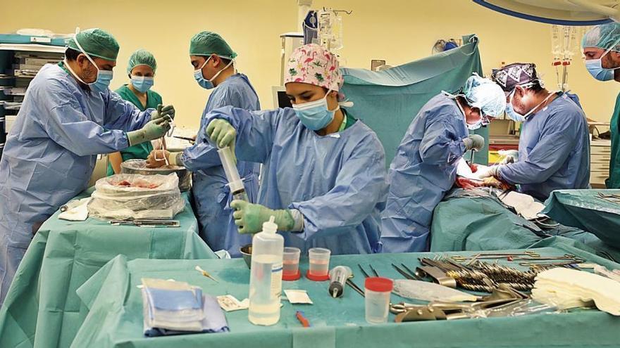 Donar òrgans, regalar vida