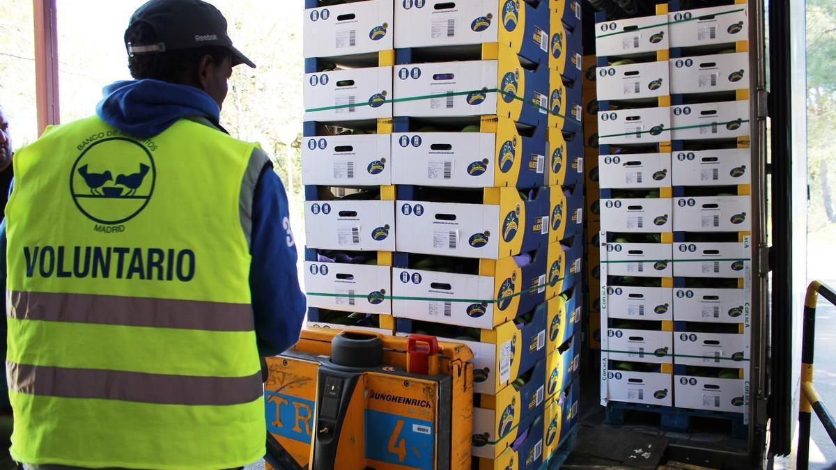 Un voluntario del Banco de Alimentos traslada cajas de plátanos cedidas por los productores.