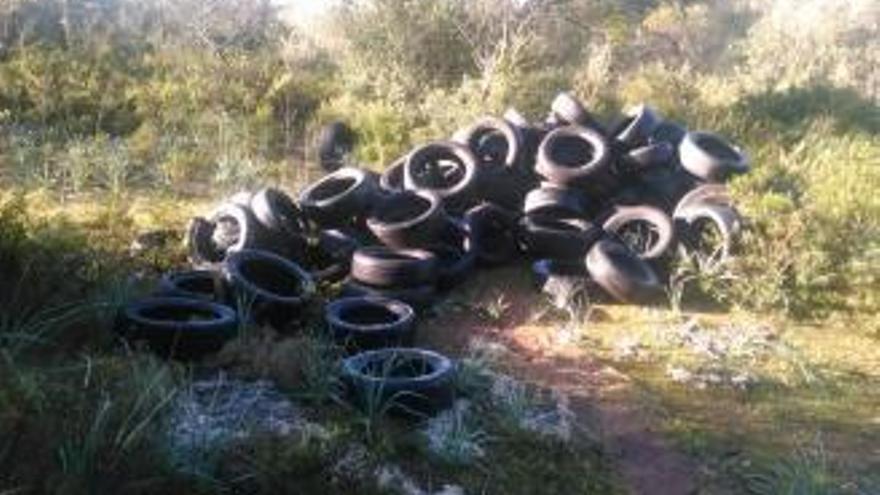 Laster lädt Ladung alter Reifen im Naturschutzgebiet ab