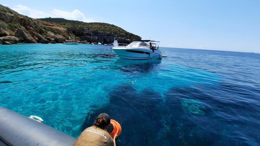 El servicio de vigilancia de la posidonia arranca este sábado en Ibiza y Formentera