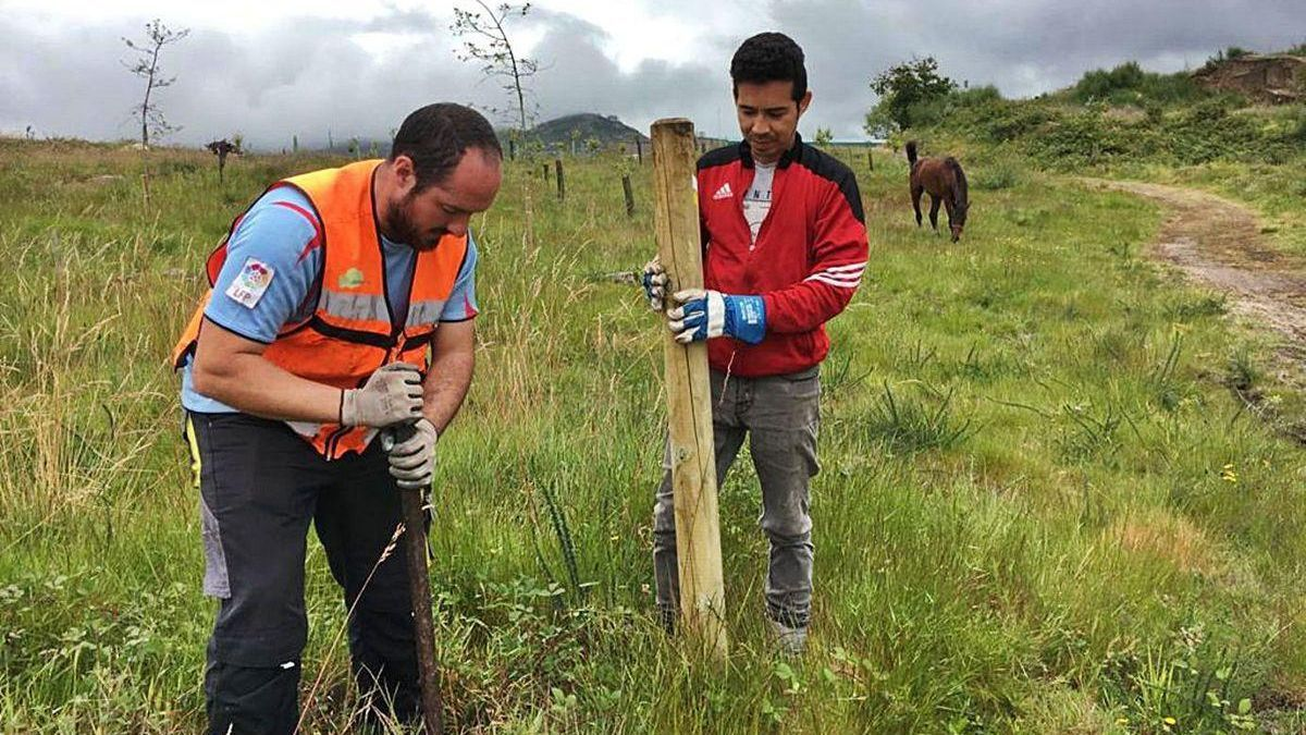 Unos operarios trabajan en la señalización de la ruta circular de Priegue esta semana.