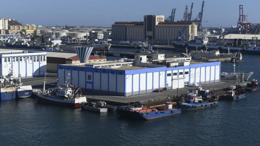 El Muelle Pesquero tendrá un centro de negocios junto a la nueva lonja