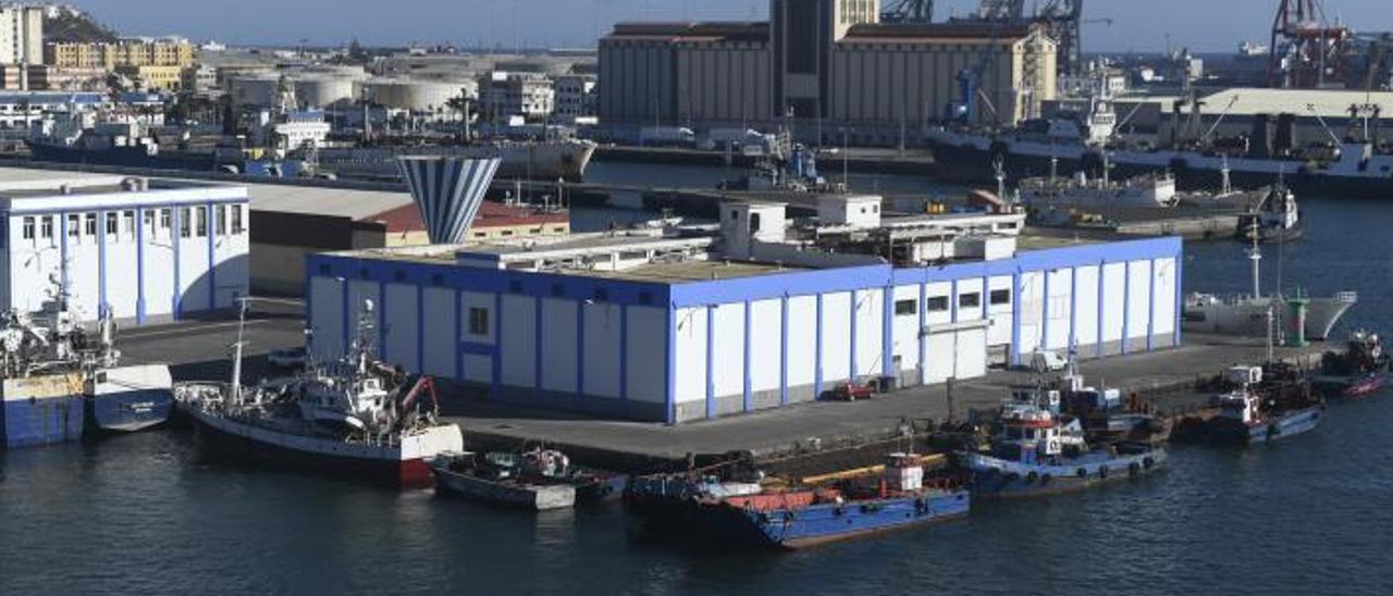 Nave del Muelle Pesquero que Frisu quiere transformar para acoger instalaciones dedicadas a la pesca fresca y un centro de negocios.