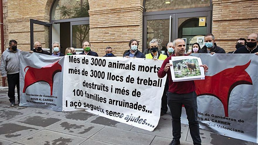 Los ganaderos de «bous al carrer» recibirán 850.000 euros por la suspensión de festejos