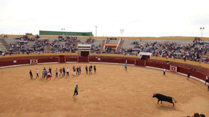 Final del ciclo novilleril sin caballos de Castilla y León en Fuentesaúco