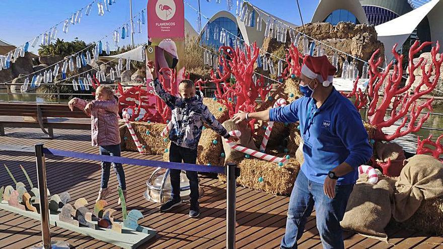 Prop de cinc mil infants participen en els tallers del festival de Nadal de l'Oceanogràfic