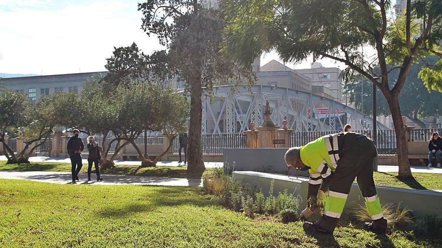 Un 'Gran Hermano' para las zonas verdes de Murcia