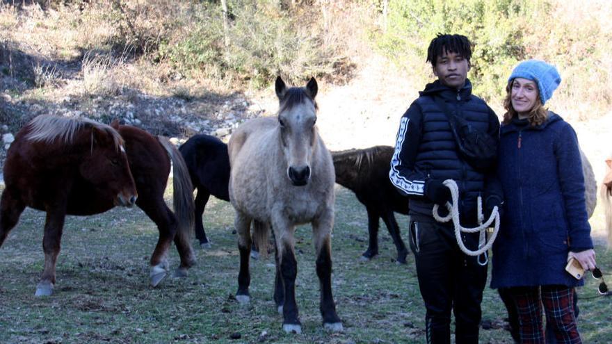 Una entitat que atén cavalls que han estat maltractats marxa de l'Alt Urgell