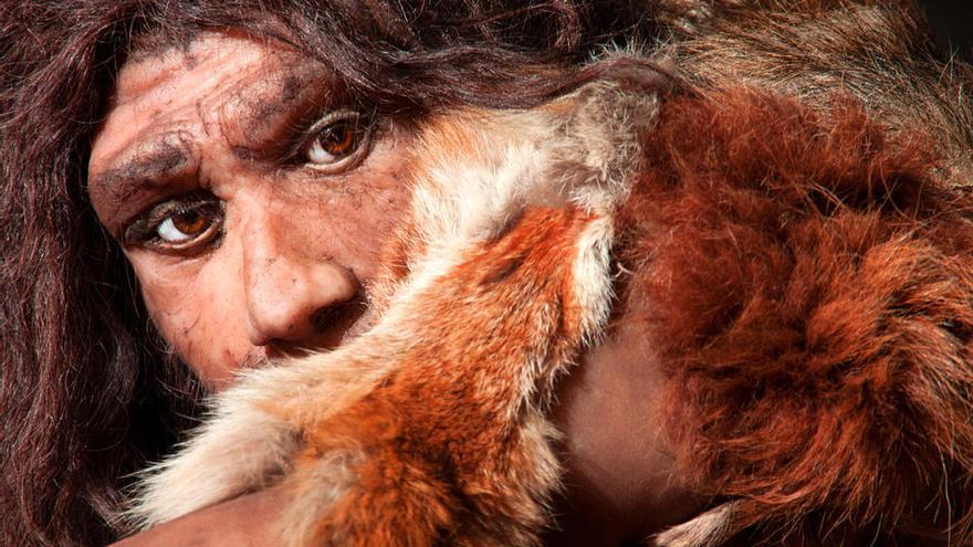 Hallan en Málaga restos del Neolítico Antiguo que evidencian canibalismo