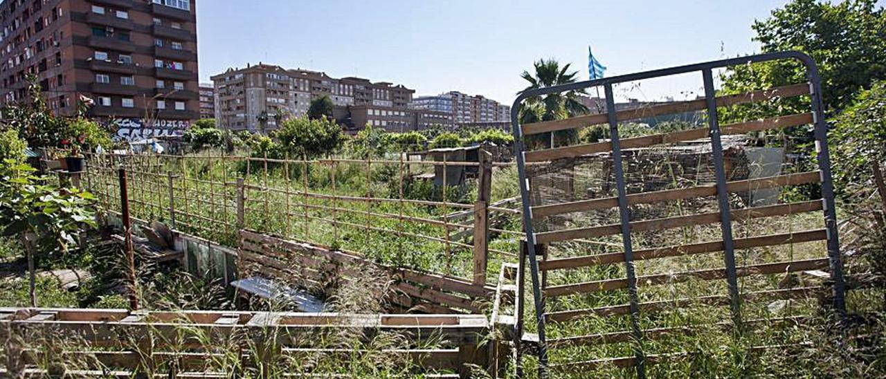 Huertos urbanos vecinales en Benimaclet. | GERMÁN CABALLERO