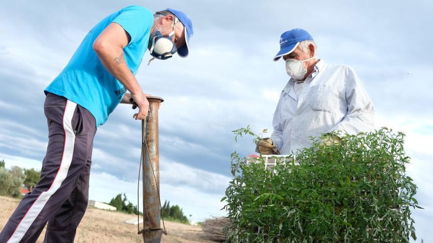 El coronavirus silencia el verano de la España rural