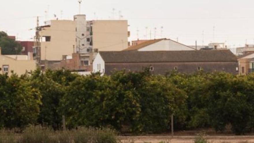 Dos brotes con seis positivos en Vinalesa, únicos casos en l'Horta