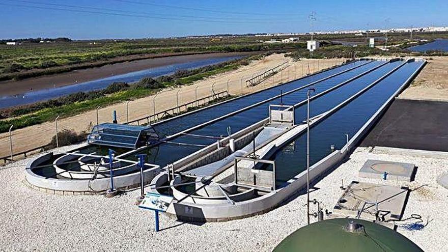 Aqualia ultima el proyecto para depurar aguas residuales con microalgas