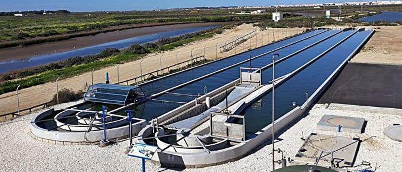 La plantación de Aqualia, con el sistema de microalgas como filtro, en la localidad de El Torno, en Chiclana de la Frontera, en la provincia de Cádiz.