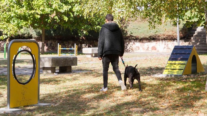 Última hora toque de queda en Zamora | Los veterinarios piden que se pueda sacar a las mascotas después de las 20.00 horas