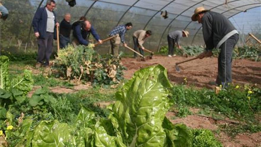 Horticultura ecológica para favorecer el relevo generacional