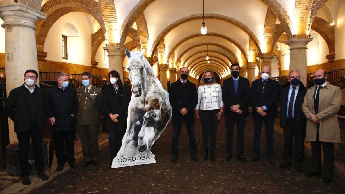 Córdoba aspira a ser la capital mundial del caballo de pura raza español