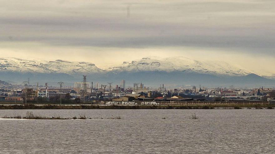 Impulso del Gobierno al plan del Consell para regenerar el humedal