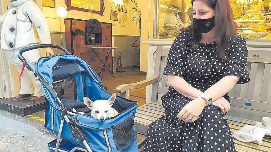 No vagi per dit   Una exconcejal de Sóller saca de paseo a su perro en cochecito