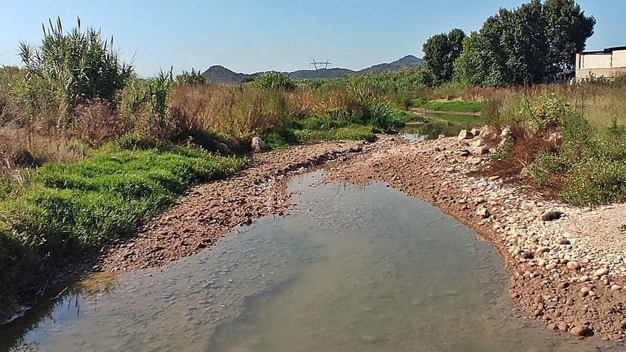 Xúquer Viu alerta que el río Albaida no puede esperar un año sin el mínimo caudal