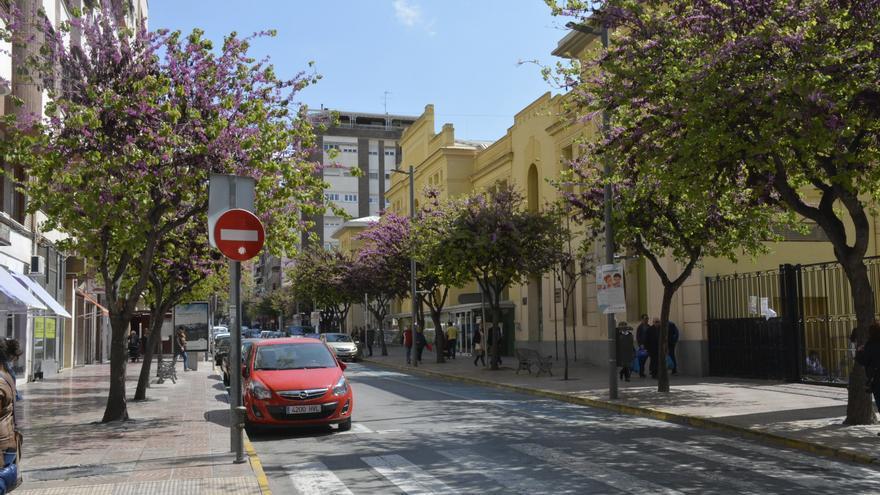 Nuevos alcorques y replantado de árboles en varias calles de Elda