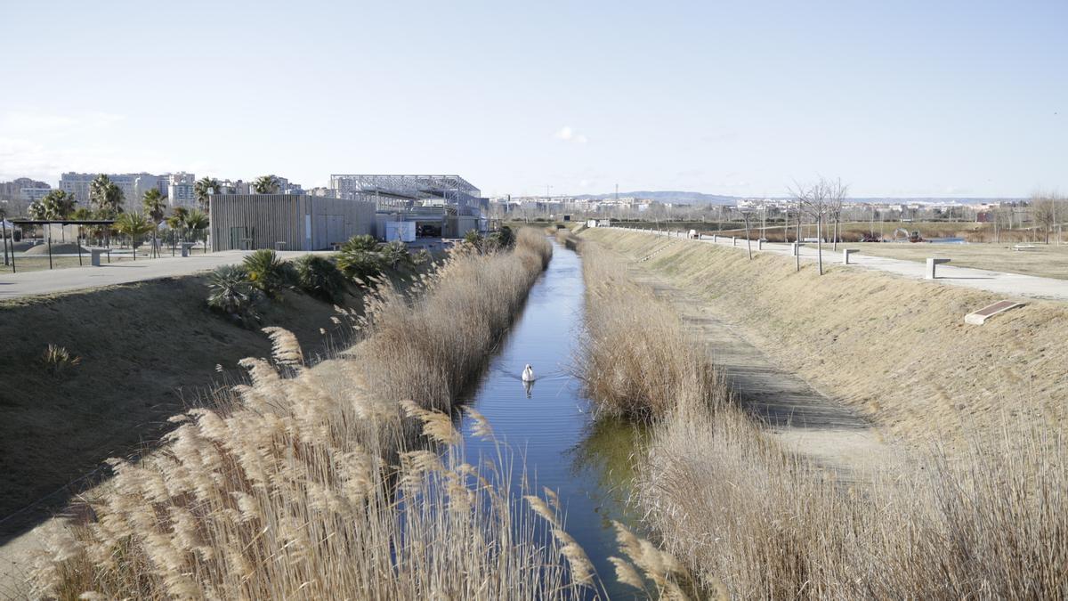 Parque del Agua de Zaragoza, en el meandro de Ranillas, uno de los espacios naturales de la ciudad.