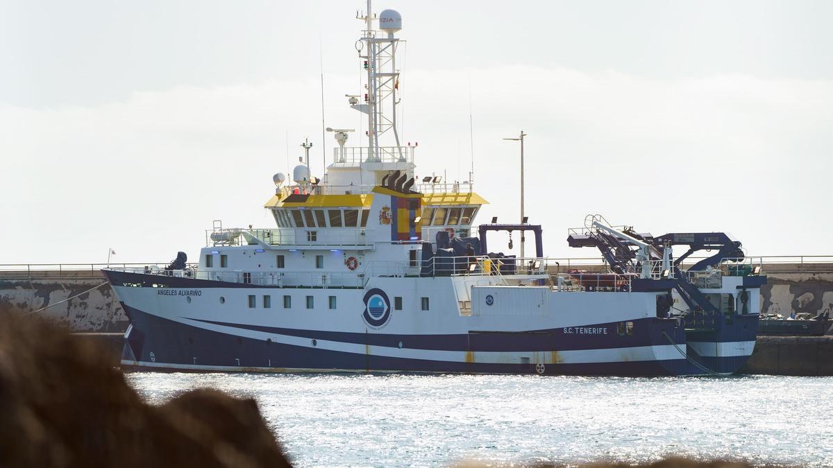 El buque oceanográfico Ángeles Alvariño atraca por razones técnicas.