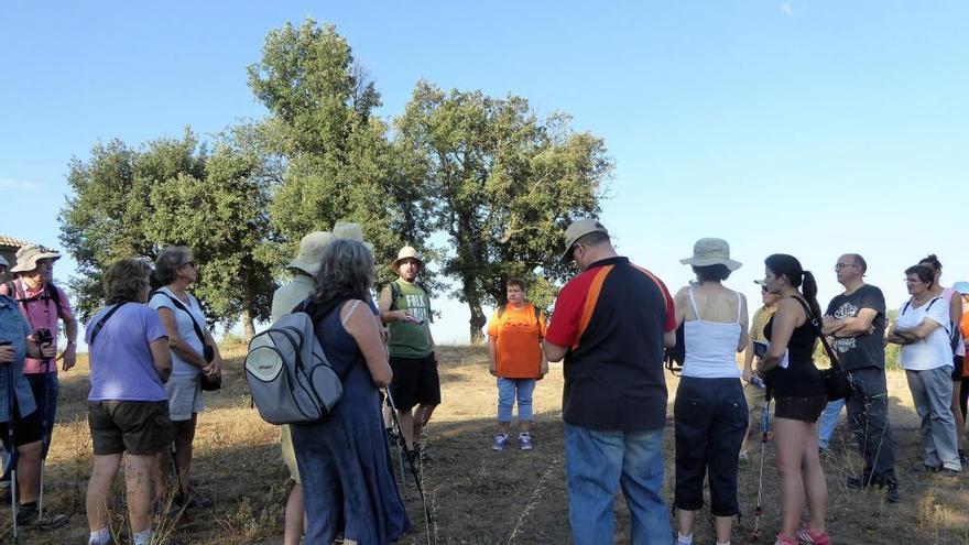 Territori de Masies i el Grup de Natura s'uneixen per donar a conèixer l'entorn del Cardener