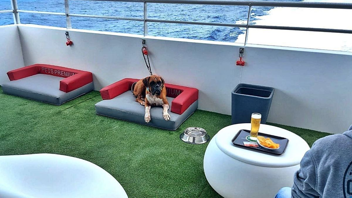 Zona para mascotas en uno de los buques de Naviera Armas.     LP/DLP