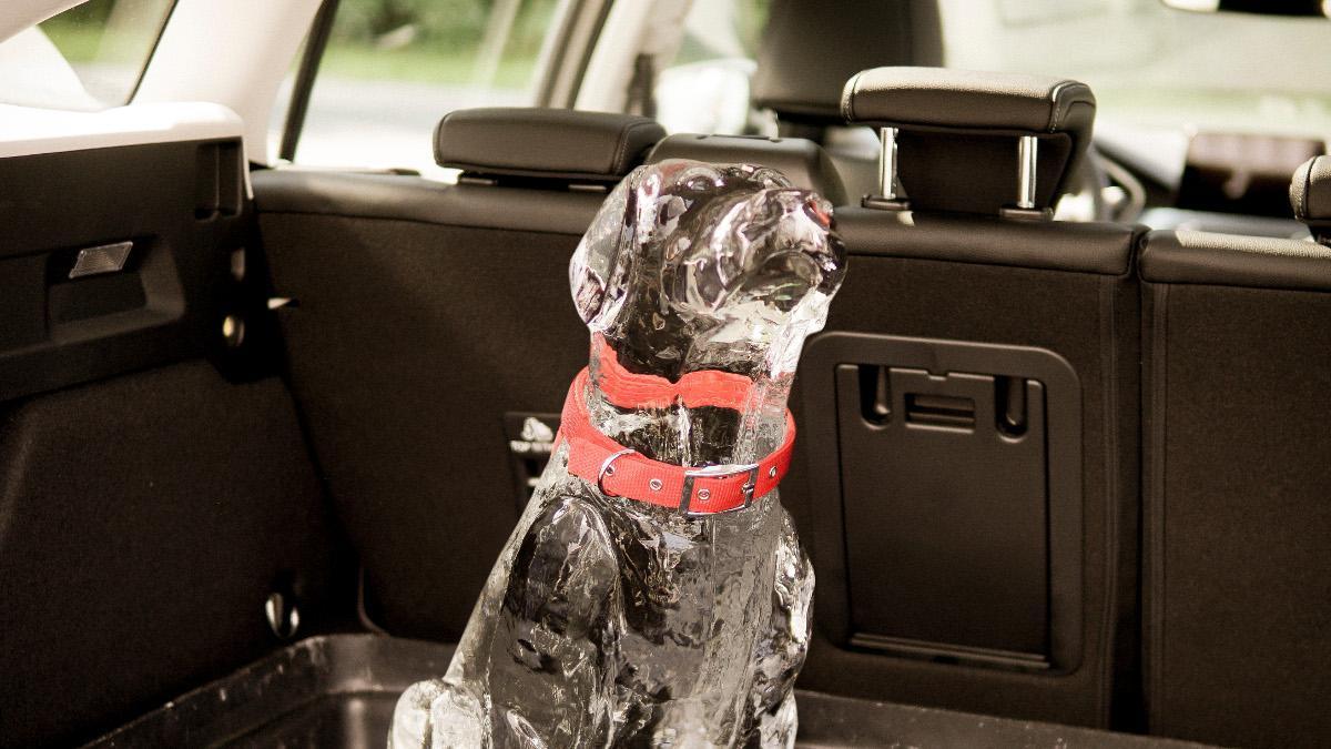 Ford crea una tecnología que alerta de la presencia de niños o mascotas al salir del coche