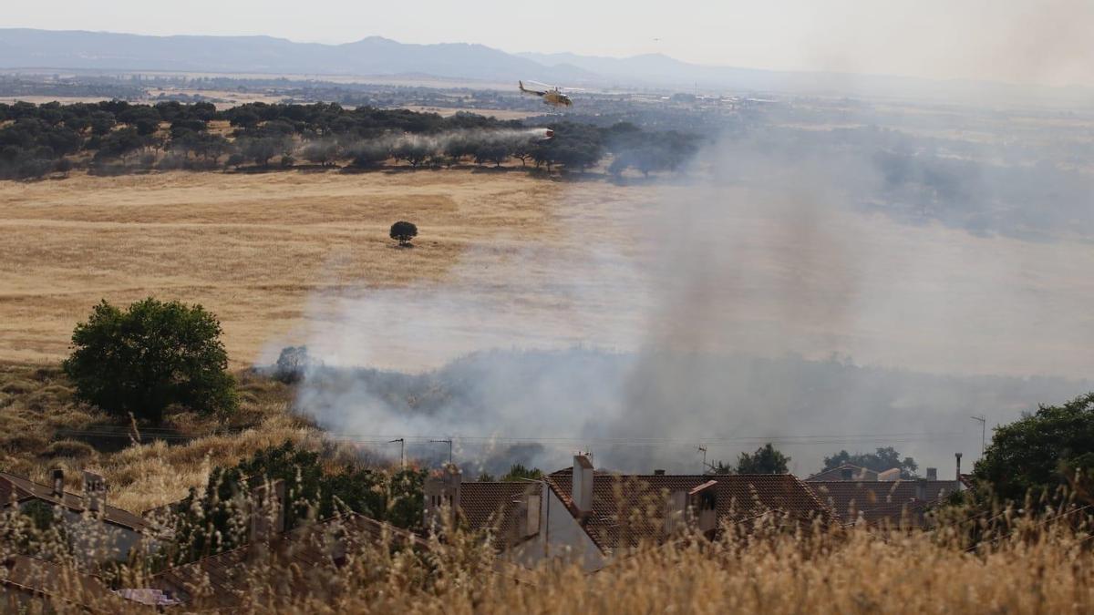 Los bomberos extinguen el incendio en el Cerro de los Pinos.