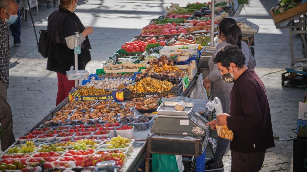 El pes econòmic més important de l'Alt Empordà es troba als sectors primari i serveis.