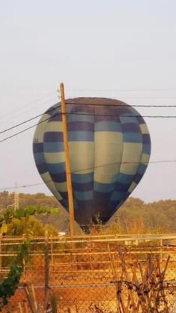 El globo aterriza en un terreno.