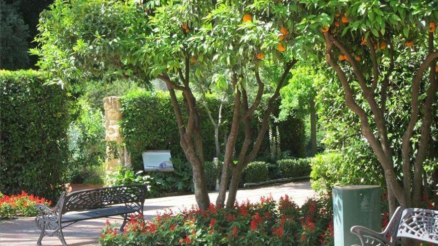 Night Room TV presenta 'Magupi live' desde el Jardín Botánico