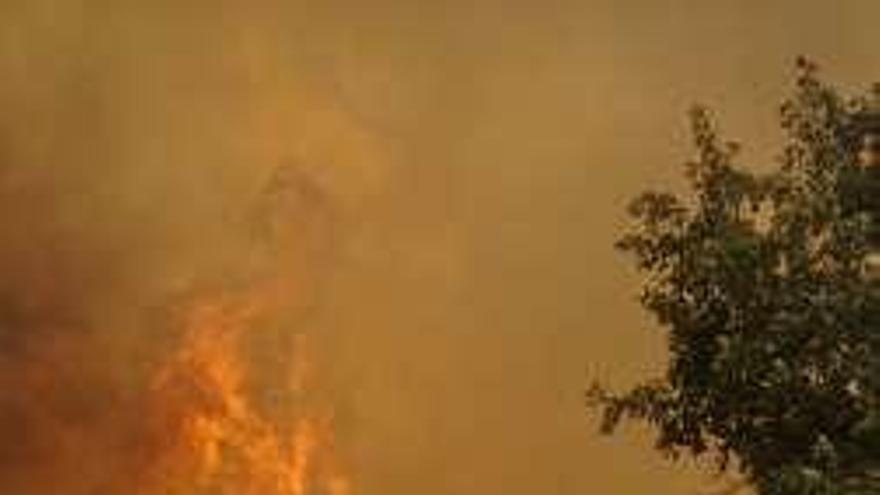 Detenido un vecino de Xinzo como presunto autor de doce incendios