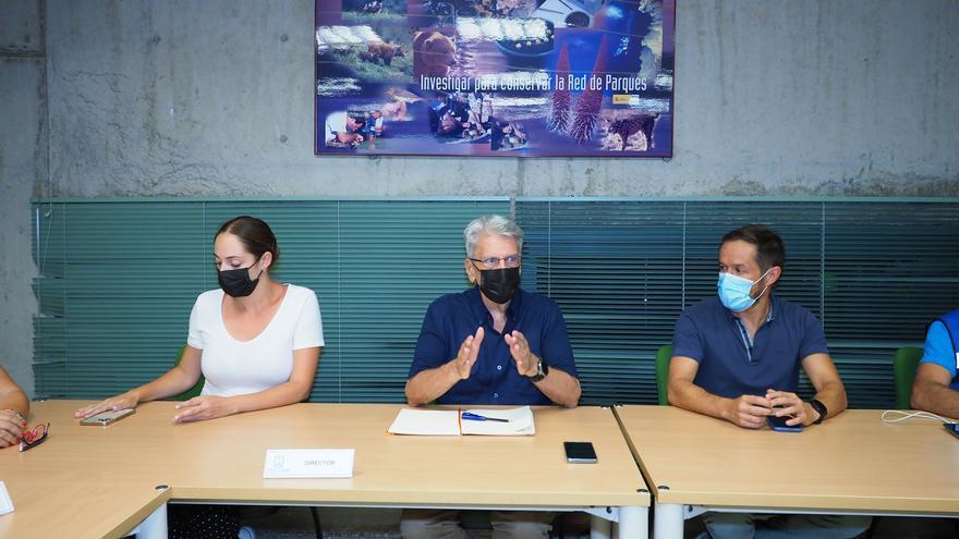 Efectivos terrestres trabajarán toda la noche en el incendio de La Palma