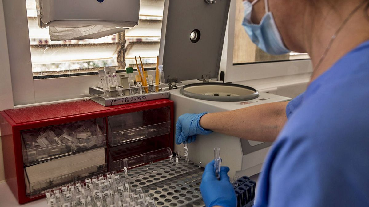 Research on coronavirus in the Microbiology service of the General Hospital of Alicante.