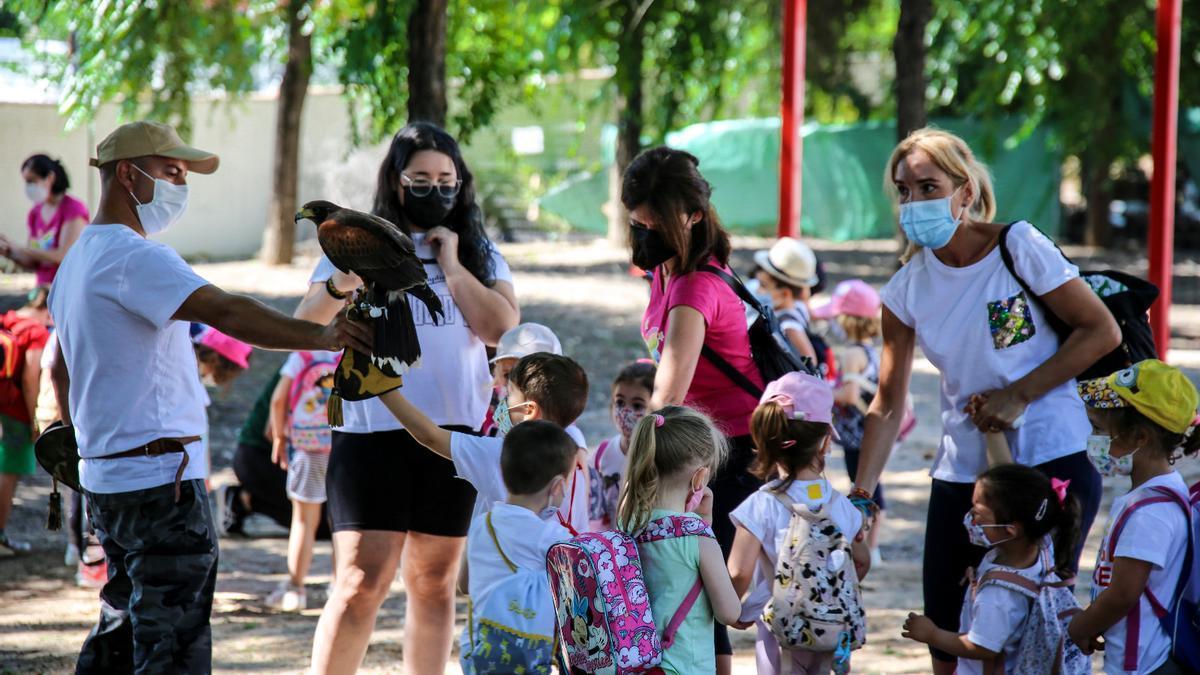 Una de las actividades realizadas en el área recreativa de El Carpio.