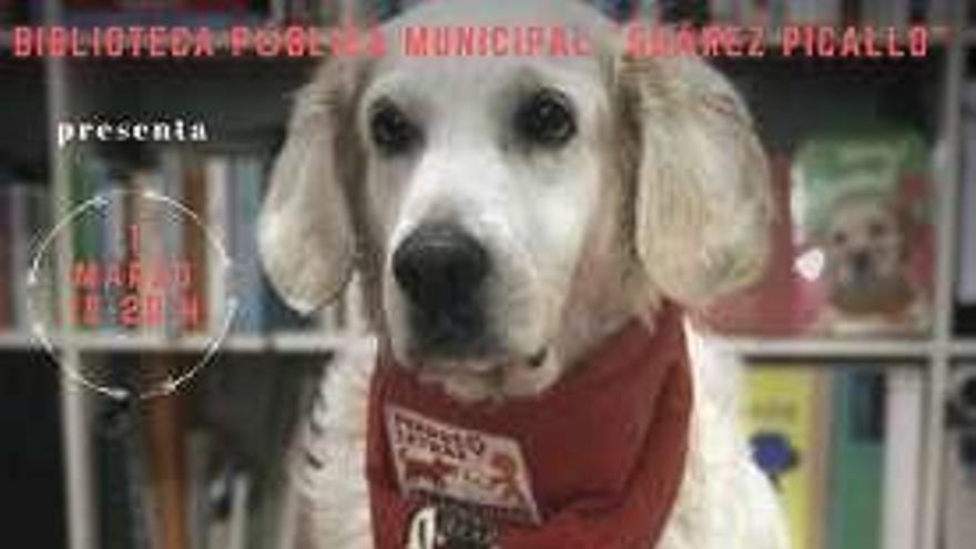 La biblioteca de Sada programa sesiones de lectura con perros para ayudar a los niños a leer