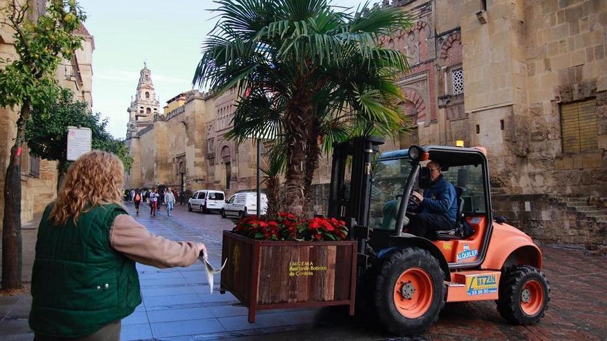 El Jardín Botánico adorna las calles del casco histórico con 40 maceteros