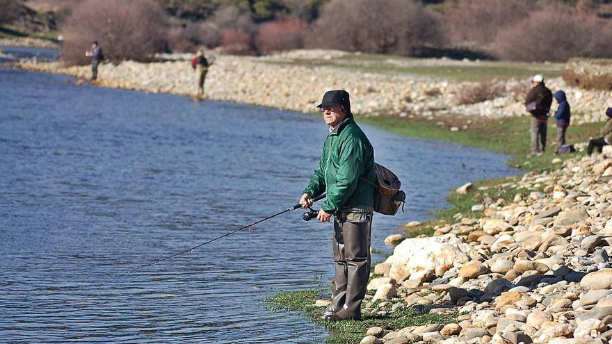 Medio Ambiente propone la pesca de la trucha del 27 de marzo al 31 de julio