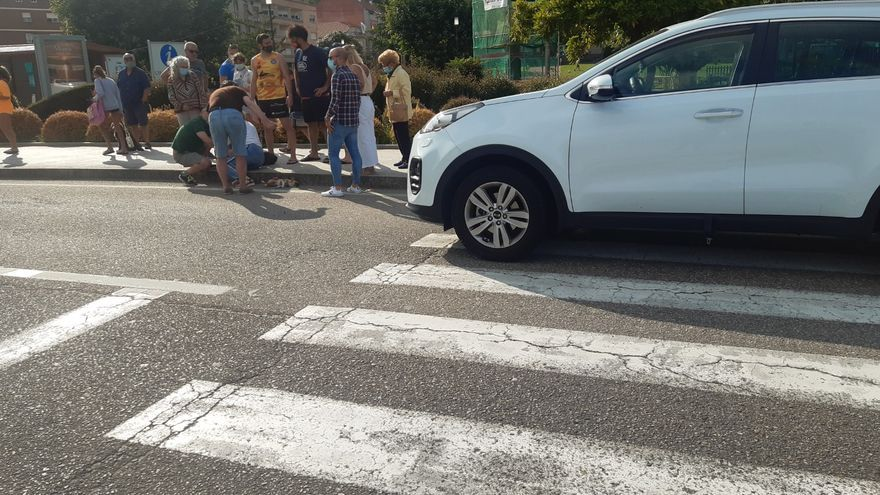 Un conductor, bajo los efectos del alcohol, atropella a una moañesa y mata a su perro