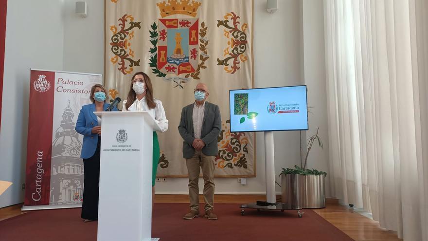 Cartagena duplicará el presupuesto en el cuidado de parques y jardines