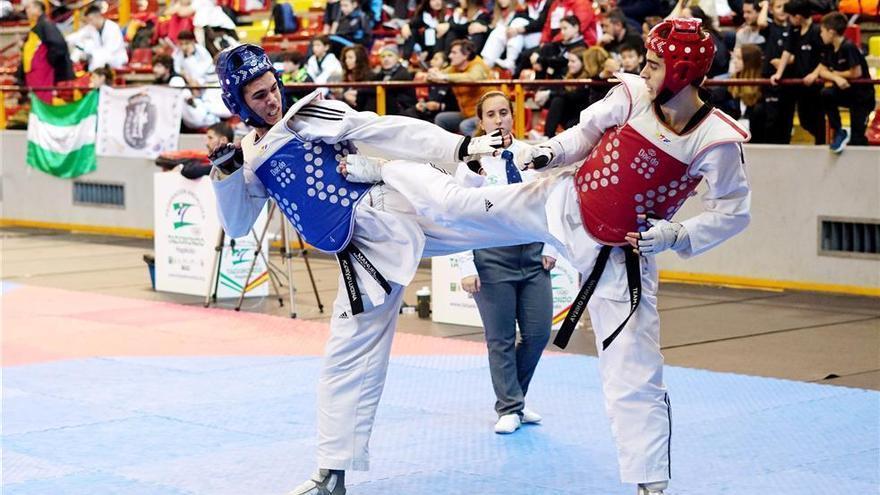 El taekwondo llena Vista Alegre
