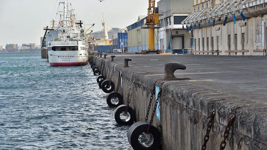 El Puerto de La Luz revisa a fondo sus instalaciones para prevenir colapsos