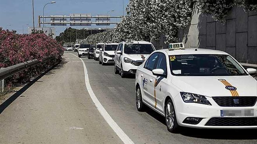 Las pruebas para obtener el carné de taxista de Palma se realizarán el 27 de abril