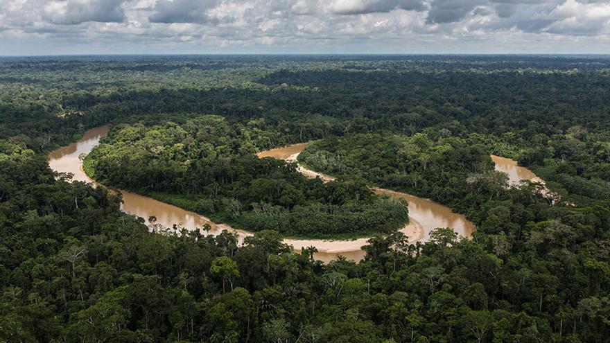 La NASA lidera un estudi que aporta una visió a escala mundial de fluxos de carboni en els boscos del segle XXI